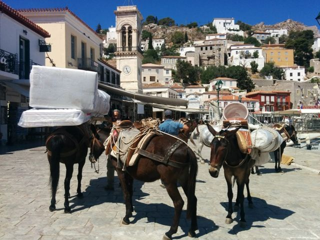 Family experiences blog Hydra