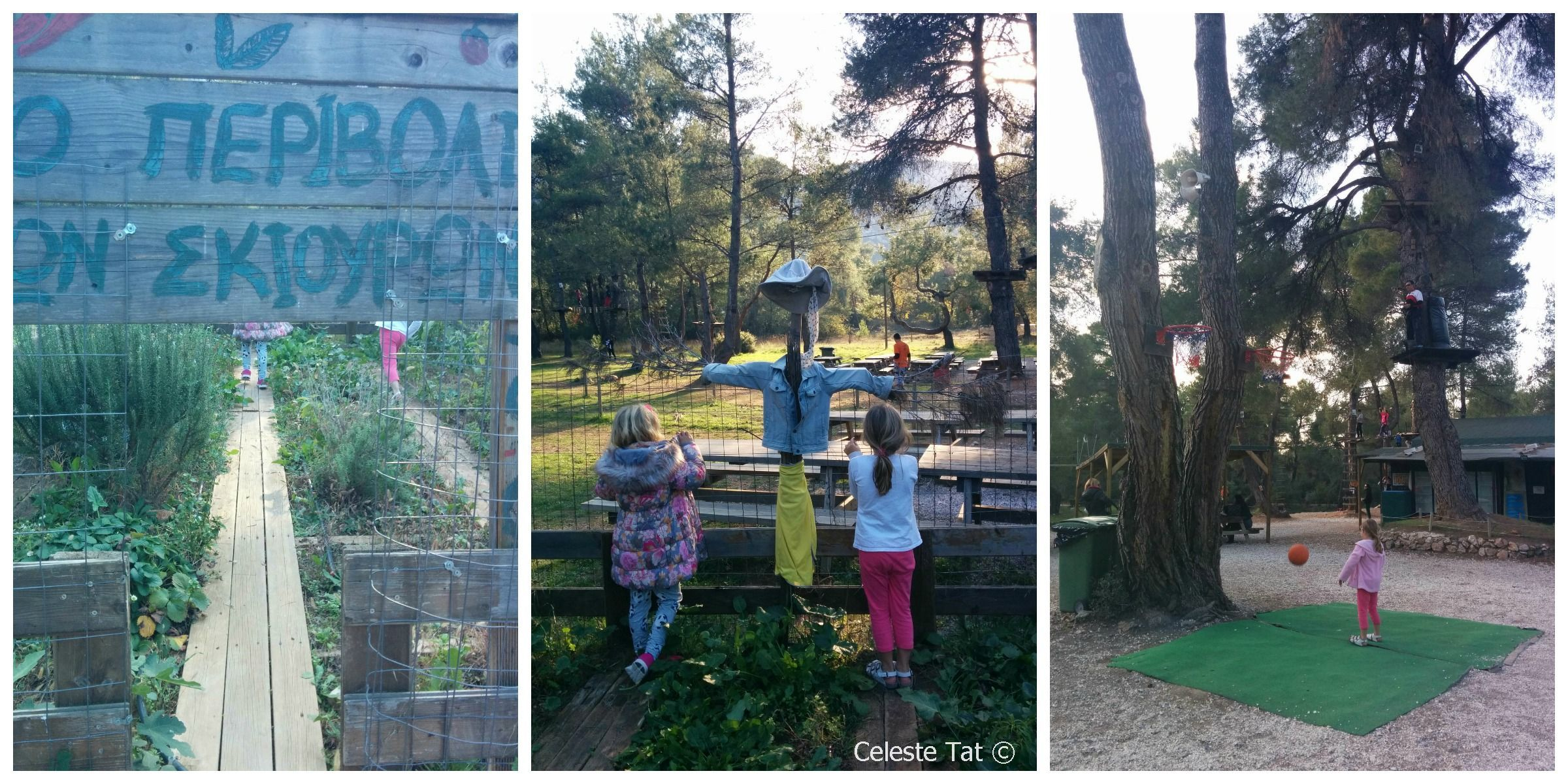 © Family Experiences Blog adventure park